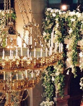 Des fleurs avec un certain lustre